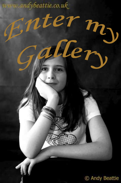 My Galleries (1/6)